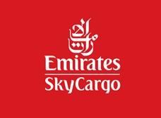 Emirates 176 Cargo Company